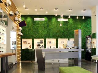 bilune studio Modern offices & stores