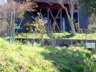 見上げ、外観。: 酒井光憲・環境建築設計工房が手掛けた家です。