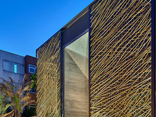 BAMBU CARBONO ZERO Pasillos, vestíbulos y escaleras modernos Bambú