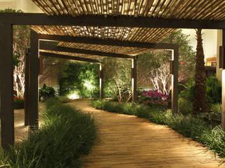 Minimalist Bahçe BAMBU CARBONO ZERO Minimalist Bambu Yeşil