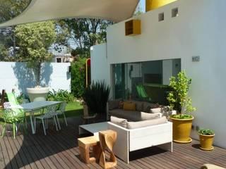 Jardines modernos: Ideas, imágenes y decoración de simbiosis ARQUITECTOS Moderno