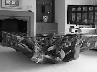 Teak Root Coffee Table :   by BluBambu Living