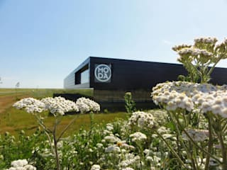 Jardin moderne par Buro Ruimte & Groen Moderne