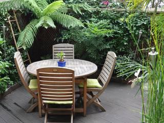 Terrasse tropicale à Enghien-les-Bains: Jardin de style  par Taffin