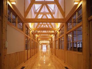 Mikamo Elementary School オリジナルスタイルの 玄関&廊下&階段 の 株式会社武村耕輔設計事務所 オリジナル