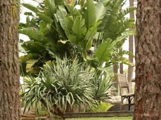 COISAS DA TERRA Eclectic style garden