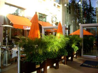 Brasserie Lipp Mexico Gastronomía de estilo clásico de Boué Arquitectos Clásico