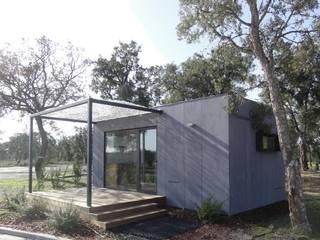 TreeHouse Spot Nhà phong cách tối giản bởi Plano Humano Arquitectos Tối giản