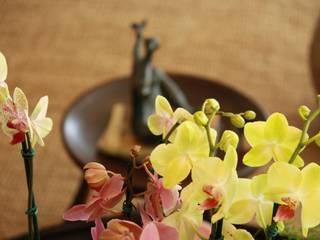 Coutinho+Vilela Living roomAccessories & decoration Multicolored