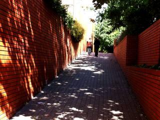 MANUEL CORREIA FERNANDES, ARQUITECTO E ASSOCIADOS 現代房屋設計點子、靈感 & 圖片 磚塊