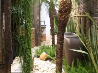 Tropical style garden by ANALU ANDRADE - ARQUITETURA E DESIGN Tropical