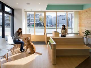 兵庫みなと動物病院: 一級建築士事務所 西村設計が手掛けた医療機関です。,
