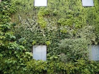 bởi LC Vertical Gardens Hiện đại