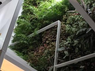 Jardin de style  par LC Vertical Gardens, Moderne