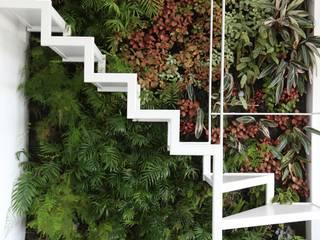 LC Vertical Gardens Modern Garden