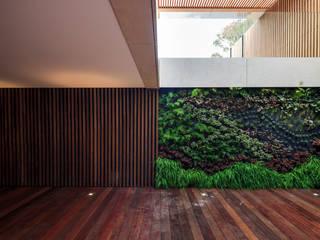 Moradia * Vilamoura (Pinhal Velho) LC Vertical Gardens JardimPlantas e flores