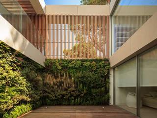 de style  par LC Vertical Gardens, Moderne