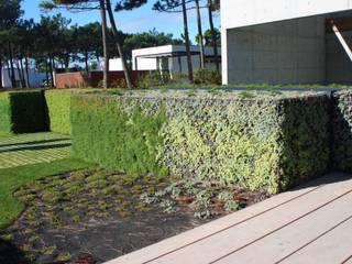 Moradia * Quinta da Marinha LC Vertical Gardens JardimPlantas e flores