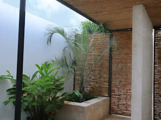 Tropical style garden by FGO Arquitectura Tropical