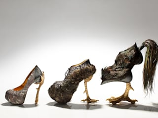 Bird-witched: 株式会社 アトリエクシノが手掛けた折衷的なです。,オリジナル