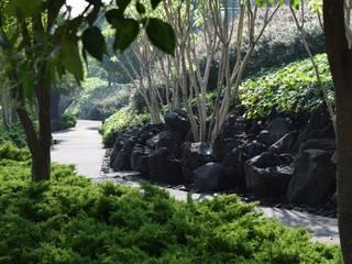 Garten von Ambiente Arquitectos Asociados, S.A de C.V., Modern