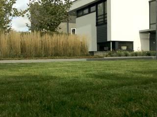 Moderne tuin met vijver en betonplaten Moderne tuinen van Stoop Tuinen Modern