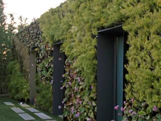 Vườn phong cách tối giản bởi guedes cruz arquitectos Tối giản