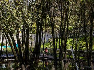 Parque Ribeiro do Matadouro: Jardins  por Oh!land studio, lda,Minimalista