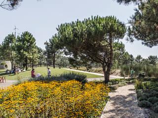 PARQUE AMBIENTAL DO BUÇAQUINHO: Jardins modernos por Oh!land studio, lda