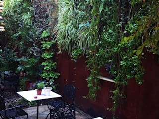 de jardines verticales Moderno