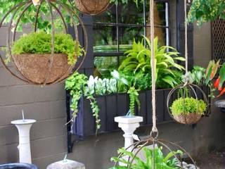modern  von jardines verticales, Modern
