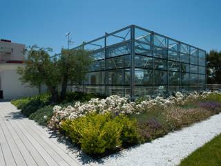 von Febo Garden landscape designers Mediterran