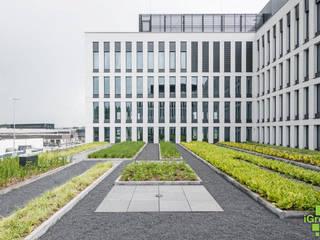Dach zielony Hilton Garden Inn: styl , w kategorii  zaprojektowany przez IGREEN Architektura Krajobrazu i Miejskie Formy