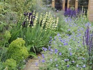 Chiswick town garden โดย Arthur Road Landscapes โมเดิร์น