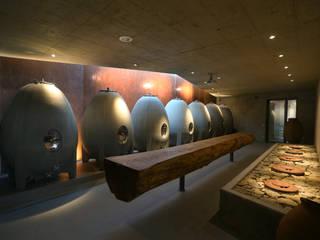 Modern Home Wine Cellar by Hofmann Keicher Ring Architekten Modern