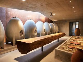 Weingut Am Stein Erweiterung Weinkeller Moderne Weinkeller von Hofmann Keicher Ring Architekten Modern