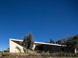 Tomar Hill House por CONTAMINAR