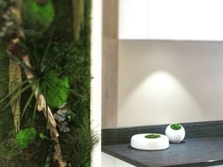 Adventive Paisajismo de interiores Verde