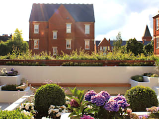 Boulevard Garden, Chigwell Modern style gardens by Boscolo Modern