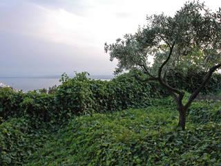 ruiz narvaiza associats sl Jardines de estilo mediterráneo