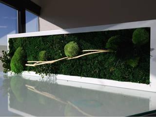 BandIt Design SoggiornoAccessori & Decorazioni Verde