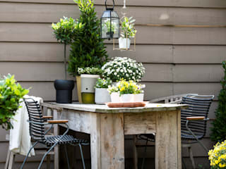 Pflanzenfreude.de Classic style garden