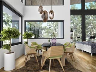 VN Studio – Mountain House: modern tarz , Modern