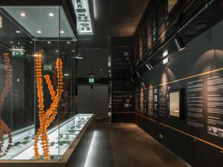 Museu do Sabão em Belver (Alentejo) MIGUEL VISEU COELHO ARQUITECTOS ASSOCIADOS LDA Modern museums