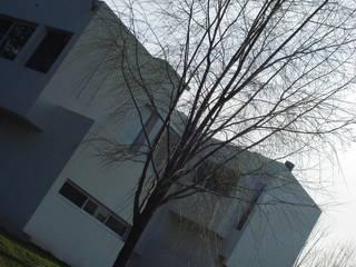 Casa Guinter: Casas de estilo moderno por Estudio d360