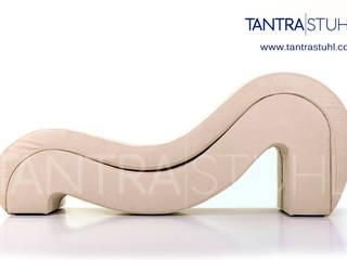 modern  by Tantra Stuhl, Modern Fake Leather Metallic/Silver