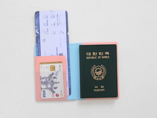 Ololo Passport Cover: pleple의