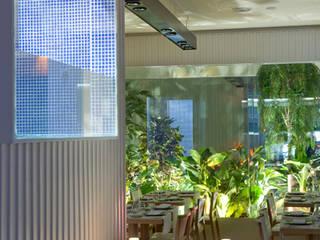 PRIMARIO Restaurante Barra: Comedores de estilo moderno por Tragaluz Estudio de Arquitectura