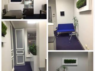 Дизайн-проект офисного пространства для коммерческой фирмы: Коммерческие помещения в . Автор – ООО 'Бастет'