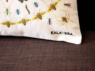 """Housse de coussin """" Entomologie """" par Kalavera Moderne"""